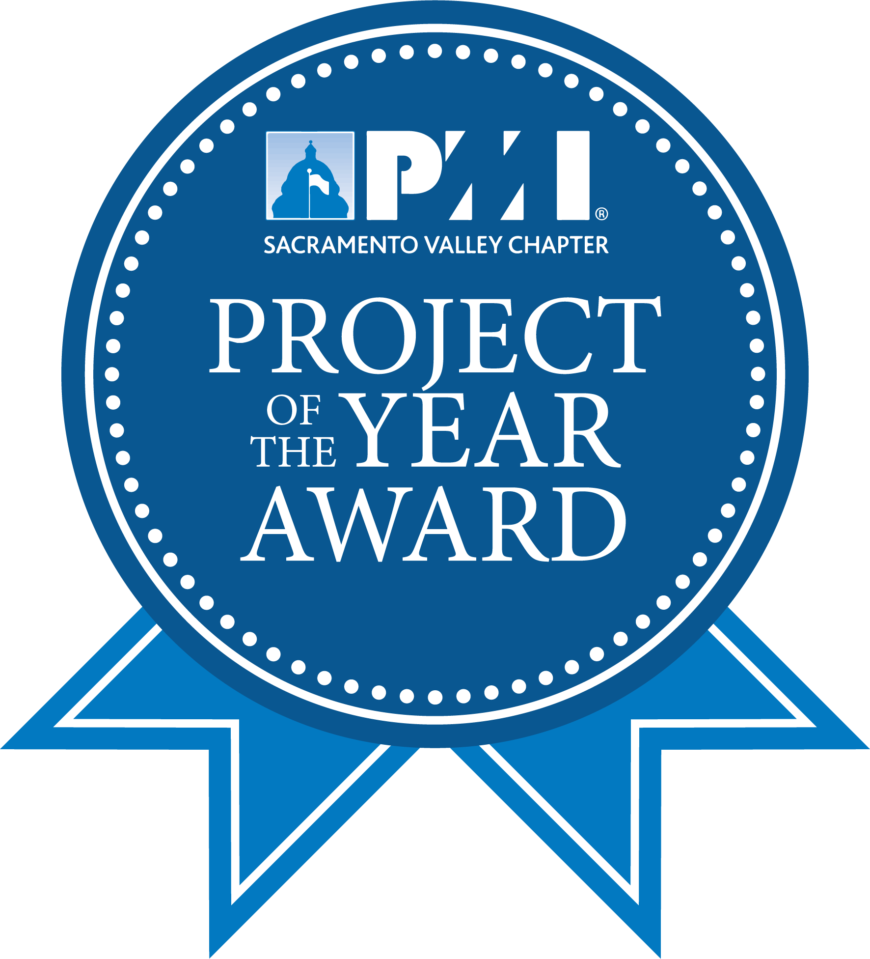 PMI Project of the Year Award box1